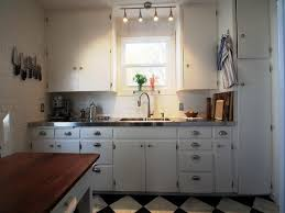 Kitchen Cabinets Diy Nice With Picture Of Concept In