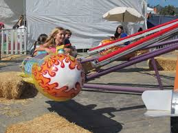 Best Pumpkin Patch In San Bernardino County by Best Pumpkin Patches And Farms In San Diego