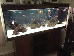 juwel 400 fish tank norfolk pets4homes
