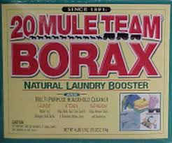 Where to Buy Borax Powder