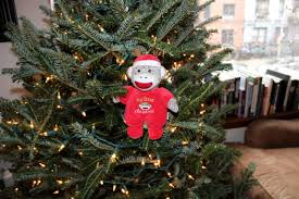 Christmas Tree Shop Brick Nj by Dan Sevigny Christmas Tree Brooklyn