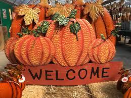 Pumpkin Picking Nj Near Staten Island by Cheesequake Farms Home Facebook