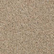 Par Rating Carpet by Lifeproof Carpet Sample Kaa I Color Ashen Tan Texture 8 In X