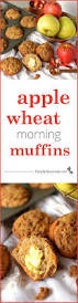 Festal Pumpkin Pie Recipe by 107 Best Images About Fall Flavor On Pinterest Pumpkins Pecans