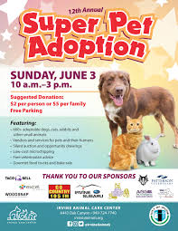 Irvine's 12th Annual Super Pet Adoption Event Coming June 3rd | The ... Irvine Dinner Mike Ward Community Park Summer Concerts Soho Taco Gyritto Truck 46 Photos 77 Reviews Food Trucks Ca The At Spectrum Center Sundays Lime Pin By Flip Masters On Food Truck Towers Office Space Cut In Defies Expectations Its Just Another Contemporary Manufacturing Company Us Taco Specialists Rolls Into Town With Singapore Tasty Tuesday Whittier Pioneer High Looking For Trucks Truckin Tlt And Dogzilla Nissan 360 Standard Coverage San Clemente Insurance Services