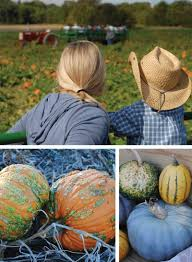 Pumpkin Patch Hayrides Lancaster Pa by Fall Family Fun Abounds Around This Good Time Gourd Susquehanna