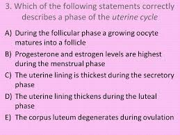 Shedding Of The Uterine Lining Is Called by Objective To Describe The Process Of Oogenesis The Ovarian Cycle