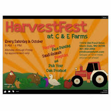 Pumpkin Picking Farms In Maryland by C U0026e Farms Home Facebook