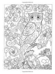 Amazon Creative Haven Owls Coloring Book Adult 9780486796642