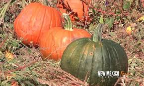 Pumpkin Patch Old Town Clovis Ca by Nm True Television New Mexico Tourism Travel U0026 Vacation Guide