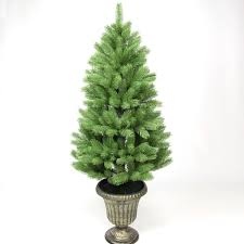 4ft Christmas Tree With Lights by Potted Christmas Trees Buy Now From Festive Lights
