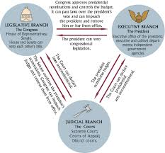 Cabinet Level Agencies Are Responsible To by Branches Of Government