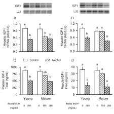 Postweaning Selenium And Folate Supplementation Affects Gene And