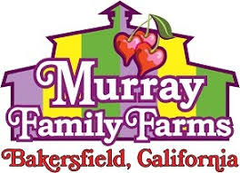 Pumpkin Patches In Bakersfield Ca by Pumpkin Patches Around Kern County In 2016