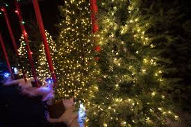 4 Foot White Christmas Tree Walmart by Canadian Tire Sues Wal Mart Over Christmas Lights Toronto Star