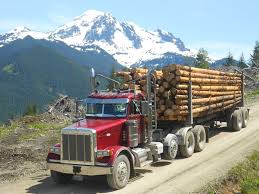 Peterbilt Bumpers At Big Chrome Bumpers Kenworth C500 Off Highway Fmcsa Says Trucks With Older Engines Exempt From Eld Mandate Sitzman Equipment Sales Llc 1989 Peterbilt 377 Log Truck 379 Log Truck Logging Pinterest Used 2004 Peterbilt Ext Hood For Sale 1951 Pin By Kay Howells On Custom 150 367 West Coast Youtube Dynamic Transit Company Transitioning Fleet To All 389 Best Of Logging Trucks New 2018 For Sale Near Edmton Ab American Historical Society