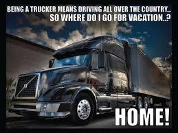 100 Truck Driver Jokes Baby Bears Big Adventure Photo Truck8ng Er