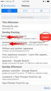 How to Selectively Clear Your Browsing History in Safari iPhone