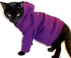 cat hoodies cat hoodie cat hoodies hoodies for cats cat clothes cat