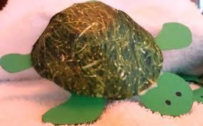 Cute Turtle Craft