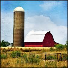 Red Barn With Silo, Bales, And Fences | Northwest Iowa. I Li… | Flickr Old Red Farm Barn With Concrete Silo Stock Photo Picture And Yellow With Canada Suzanne Berton Cute And Free Clip Art Barn Silo Donnasdesigns Cornfield A Silos In Rural Wisconsin Filered A Panoramiojpg Wikimedia Commons Image 21504700 Beautiful White 113806882 Shutterstock Photos Images Alamy Barns J F Mazur Fine Studio Playhouse Plan 300ft Wood For Kids Pauls Clipart 33