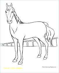 Horse Pictures To Color Packed With Mare And Foal Prepare Perfect