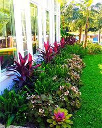Stunning Way To Add Tropical Colors To Your Outdoor Landscaping ... Modern Garden Plants Uk Archives Modern Garden 51 Front Yard And Backyard Landscaping Ideas Designs Best 25 Vegetable Gardens Ideas On Pinterest Vegetable Stunning Way To Add Tropical Colors Your Outdoor Landscaping Raised Beds In Phoenix Arizona Youtube Kids Gardening Tips Projects At Home Side Yard 55 Youll Fall Love With 40 Small 821 Best Images Plants My Backyard Outdoor Fniture Design How Grow A Lot Of Food 9 Ez Tips