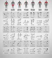 exercice de musculation maison vigilance envers l adversaire