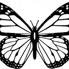 Simple Butterfly Coloring Pages Best New Refrence Monarch