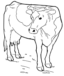 Adult Cow Coloring Pages To Color Picture Of A