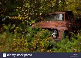 Bethel Maine Foliage Old Ancient Pick Up Truck In Fall Leaves In ... Warm Weather Cool Trucks At The Northern Shdown Early 60s 1941 Ford Custom Show Truck Makes A Big Comeback Hot Coolest Classic Of 2016 Seasonso Far Rod For Sale Classics On Autotrader 1968 Gmc Exposure Network F250 Pickup Old And Tractors In California Wine Country Travel 1963 F100 Stock Step Side Ideas Pinterest