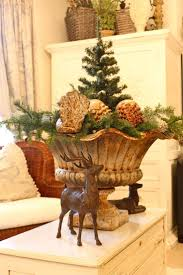 Qvc Christmas Tree Hugger by 29 Best Dried Flower Power Images On Pinterest Dried Flowers