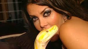sendung verpasst wildes wohnzimmer python auf nackter