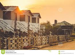 100 Small Beautiful Houses On The Sunset Landscape Composition