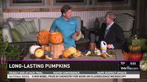 Preserve A Carved Pumpkin And Prevent Mold by Long Lasting Pumpkins Youtube
