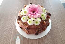 caro s kuchenwunder haselnuss nutella torte