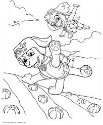 Free Printable Coloring Pages Paw Patrol Zuma And Skye