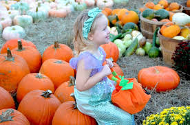 Pumpkin Patch Caledonia Il For Sale by The 13 Best Pumpkin Patches In Mississippi