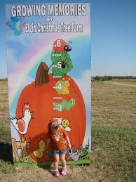 Elgin Christmas Tree Farm Pumpkin Festival by Unexpectedly Expecting Baby Elgin Pumpkin Festival At The