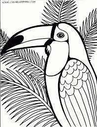 Rainforest Coloring Page Animal Pages Free New