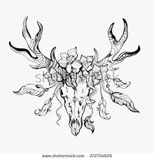 Vintage Hand Drawn Graphic Of Deer Flowers And Feathers Can Be Used As