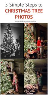 Christmas Tree Cutting Permits Colorado Springs by 157 Best Photography Images On Pinterest Photography