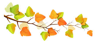 Branch clipart fall branch 5