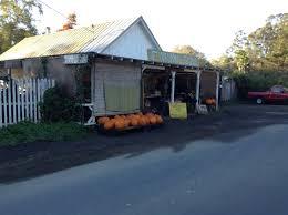 Nicasio Pumpkin Patch Marin by Bolinas U2013 Community Bulletin Board Locations Blog