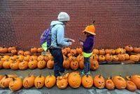 Pumpkin Festival 5k Milford Nh by 20 000 Jack O Lanterns New Hampshire