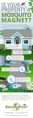 How To Prevent Mosquitoes In Your Back Yard [Infographic] How To Remove Mosquitoes From Your Backyard Youtube 25 Unique Mosquito Spray Ideas On Pinterest Natural Mosquito Keep Mosquitoes Out Of Your Yard For A Month And Longer With Ways Repel Accidentally Green To Get Rid Of Bugs In Backyard Enjoy Bbq Picture With Gnats In The House Kitchen Plants Organically 9 Steps Pictures Best Sprays Insect Cop 27 Banish From Next Barbecue Roaches Fleas Ants Repelling Plants Plant Citronella Lemongrass