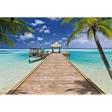 Tropical Beach Wall Mural 8ft 10in Wide x 6ft 4in High Amazon