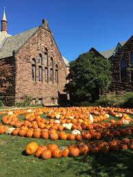 Pumpkin Patch Morristown Nj by Baristanet Your Local Homegrown Online Community Since 2004