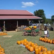 Pumpkin Patch Sf Yelp by Pumpkin Patch Farm Csa 230 Old Dixie Hwy Nw Adairsville Ga