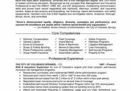 Case Manager Resume Samples From Insurance Example